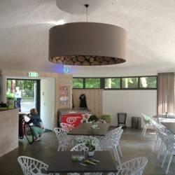 Lampenschirme mit Baumstammdruck