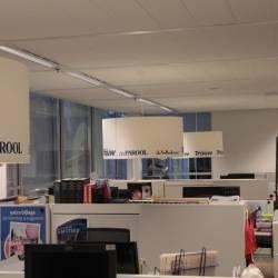 Lampenschirme Pressegruppe.JPG